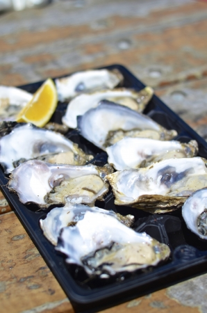 lemon wedge: Dozen fresh oysters with lemon wedge at Kangaroo Island, Australia