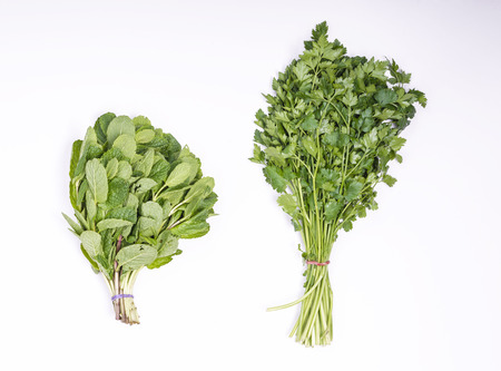 perejil: Mint and parsley on white background Foto de archivo