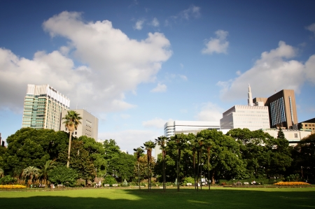 office environment: Park in Tokyo surrounded by buildings on a sunny day