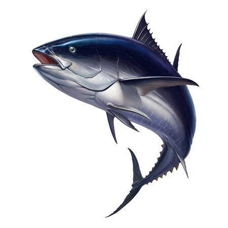 Tuna fish in fast motion realistic illustration of a big fish on white background isolate.