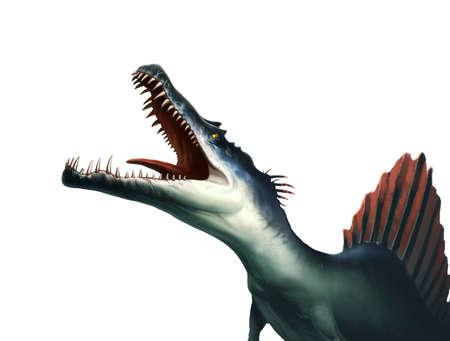 Big snout dinosaur Spinosaurus screams illustration isolate realism. 免版税图像