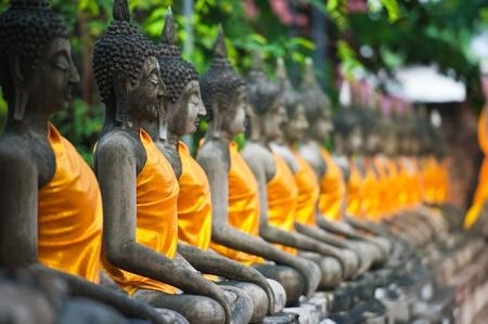 yai: Fila di Buddha Status al Wat Yai Chaimongkol, Ayutthaya, Thailandia