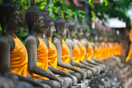 Row of Buddha Status at Wat Yai Chaimongkol, Ayutthaya, Thailand  Stock Photo - 9755325