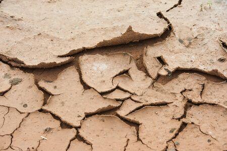 dryness: cracked ground