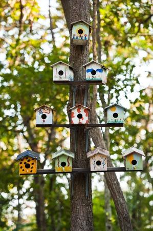 bird house: Birdhouses on a tree