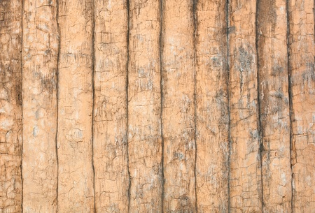 Texture of Cement Wall photo