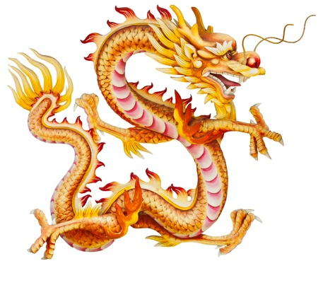 dragon fire: Golden dragon isolated on white background  Stock Photo