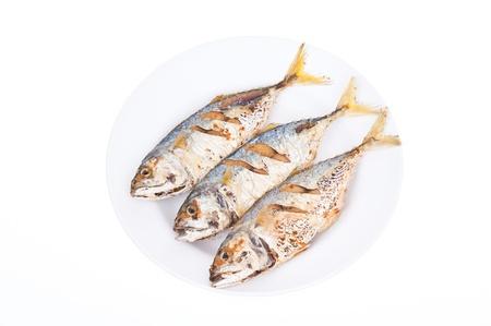 Three fried mackerel fishes on white background photo