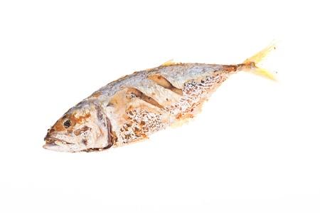 fried mackerel fishes on white background photo