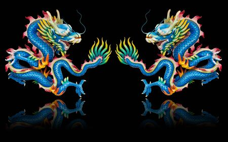 Twin blue dragon statues on black background with reflection photo