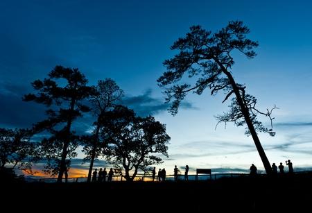 silhouette landscape at Phu Soi Dao national park Thailand photo