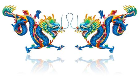 Twin blue dragon statues on white background with reflection photo