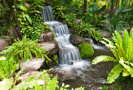 Water fall in the garden photo