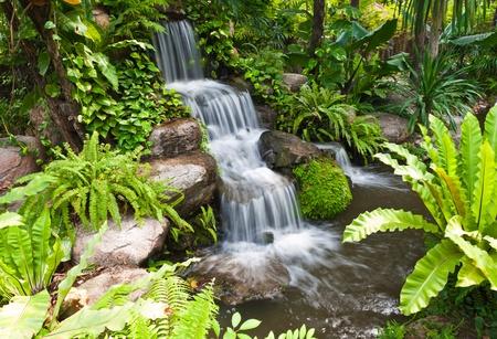 garden landscape: Water fall in the garden