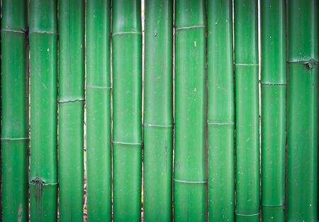 green wall, bamboo texture for background photo