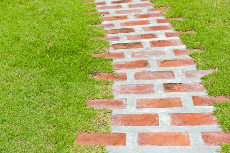 garden path: Garden brick path with grass growing up between the stones  Stock Photo