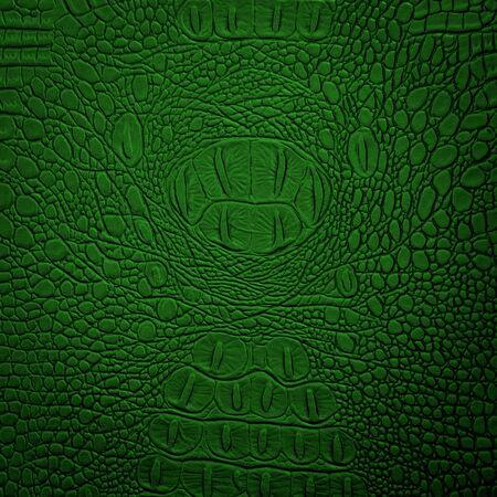 crocodile skin leather: crocodile leather green