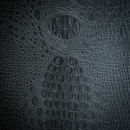 crocodile gray leather