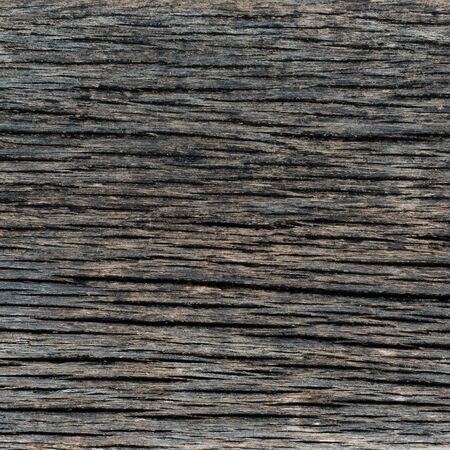 black wood texture background photo