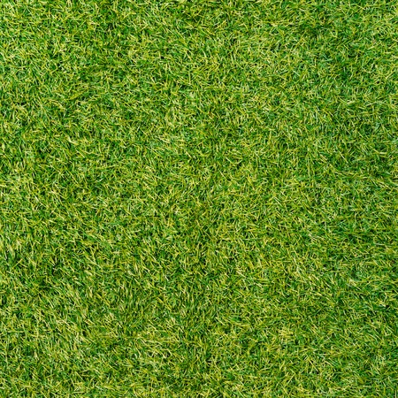 Green grass surface Stock Photo - 21160430