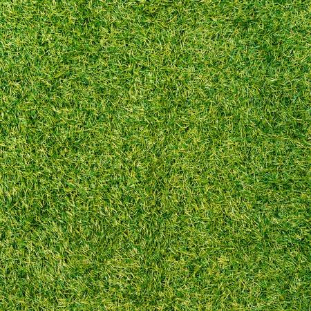 Green grass surface Stock Photo - 21160430