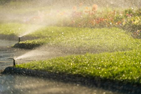 gazon sprinkler sproeien van water Stockfoto