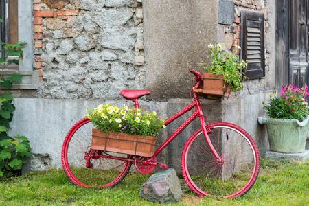 Dekorativer Fahrrad ausgestatteter Korb blüht Garten, rotes Fahrrad, Weinlesefahrrad