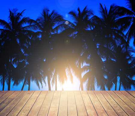 coconuts silhouettes with tropical sunset Stock Photo