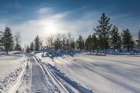 Snow covered road in forest Stock Photo