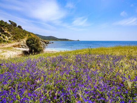 Free beach of Punta Libeccio - Cala Angioni overlooking the turquoise sea of ? ?? ? ?? Sardinia