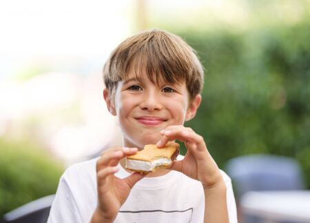 Close up portrait of happy, beautiful, cute, little boy, holding ice cream sandwich in his hand, looking ahead Stock fotó
