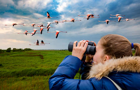 Young girl watching flamingos through binoculars against the background of the nature. Observation of birds. Birdwatching