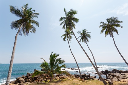 Beautiful landscape tropical rocky beach. View of territory about Dondra Head Lighthouse, Sri Lanka.