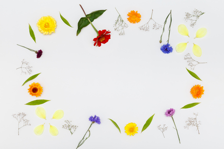 Frame with flowers on white background. Top view, flat lay pattern Stock Photo