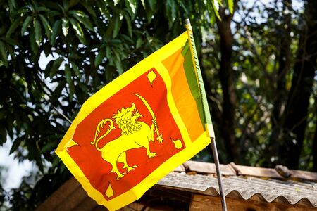 national background, Flag Sri Lanka