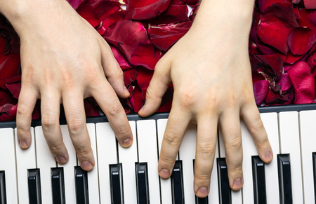 Pianist hands on red rose flower petals playing romantic serenade for valentine's day. Romantic concept with piano keys, top view. Classical music instrument.