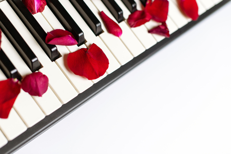 Piano keys strewn with rose petals, isolated, copy space. Piano or synthesizer keyboard. Classical music instrument for playing romantic music.