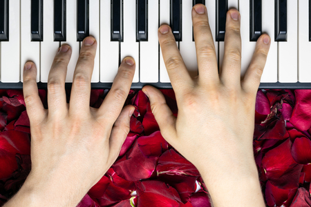 Pianist hands on red rose flower petals playing romantic serenade for valentines day. Romantic concept with piano keys, top view. Classical music instrument.