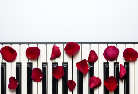 Piano keys with red rose flower petals, isolated, top view, copy space. Romantic concept. Piano or synthesizer keyboard. Classical music instrument for playing romantic music.