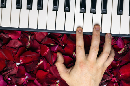 Pianist hand on red rose flower petals playing romantic serenade on valentine's day loved one. Romantic concept with piano keys, top view. Classical music instrument. Archivio Fotografico