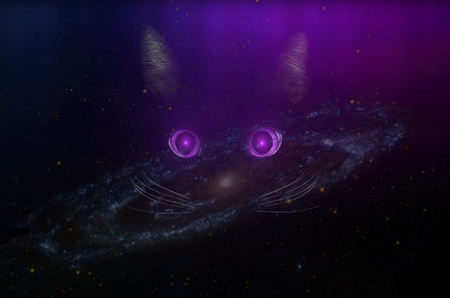 Black cat concept in a deep space galaxy, dark mysterious style. Glowing purple cat eyes in the dark night. Beautiful animal portrait. Domestic pet concept. NASA image.