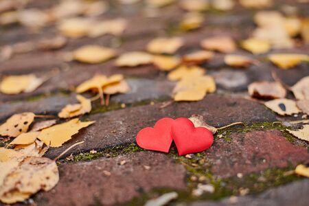 Deux coeurs sur chemin d'automne. Concept d'amour ou d'amitié. Symbole du mariage, de la lune de miel et de la Saint-Valentin. Beau fond d'automne, copiez l'espace. Banque d'images