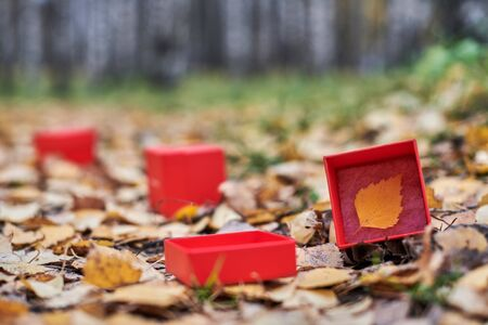 Three box with autumn leaf. One of seasons of year change concept, copy space. Weather forecast change symbol
