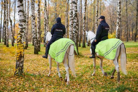 Mounted police in autumn city park, back view. POLICE inscription on back. Two spanish police officers on horseback patrol the park.