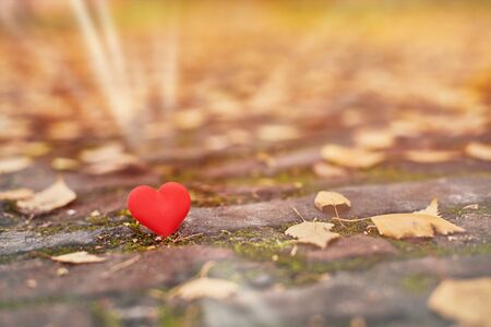 One heart on autumn path. Unrequited, one-sided love or loneliness concept. Symbol of unrequited love victims of Valentine day. Beautiful autumn background, copy space.