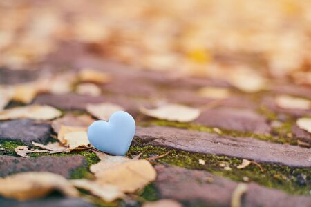 One blue heart on autumn path. Unrequited, one-sided love or loneliness LGBT concept. Symbol of unrequited love victims of Valentine day. Beautiful autumn background, copy space.