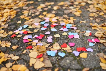 Hearts on road with autumn leaves. Love, friendship or polygamy concept. All family members together.