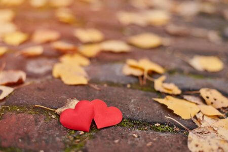 Two hearts on autumn path. Love or friendship concept. Symbol of marriage, honeymoon and Valentine day. Beautiful autumn background, copy space.