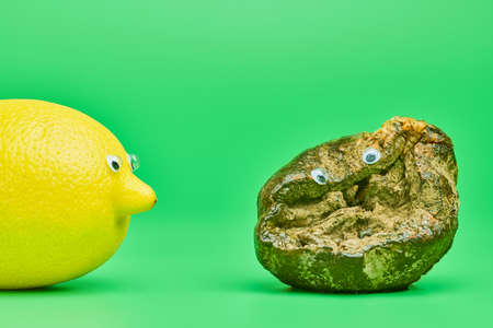 Two lemons with eyes. Rotten lemon and fresh lemon compare. Funny psychological comparison concept, green background. Unsuitable inedible food for cooking and new tasty lemon.