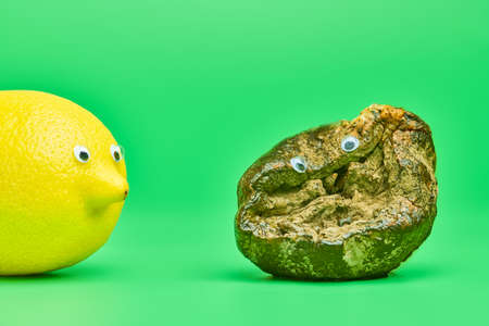 Two lemons with eyes. Rotten lemon and fresh lemon compare. Funny psychological comparison concept, green background. Unsuitable inedible food for cooking and new tasty lemon. Imagens